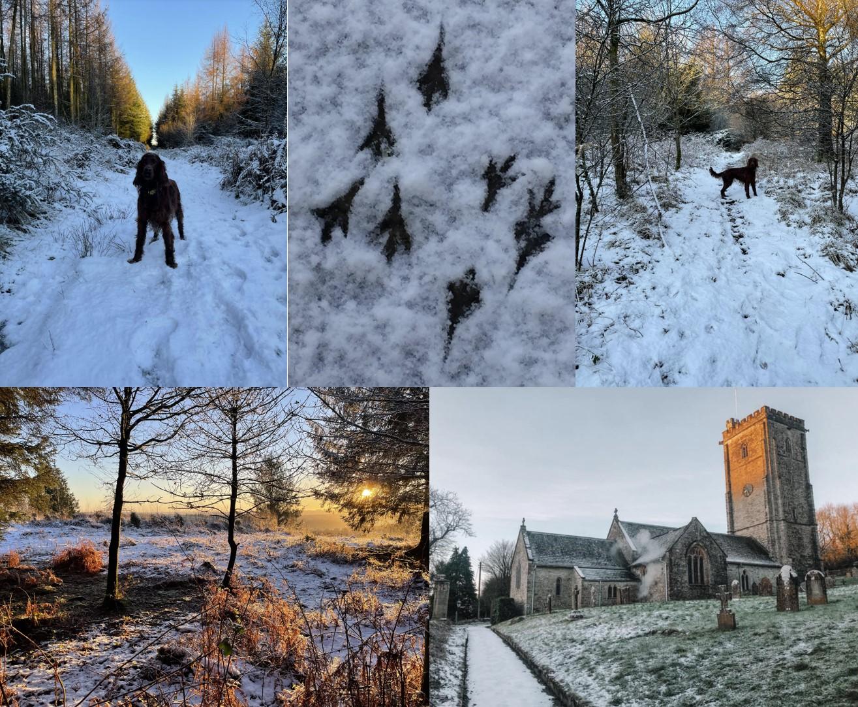 snowy membury1